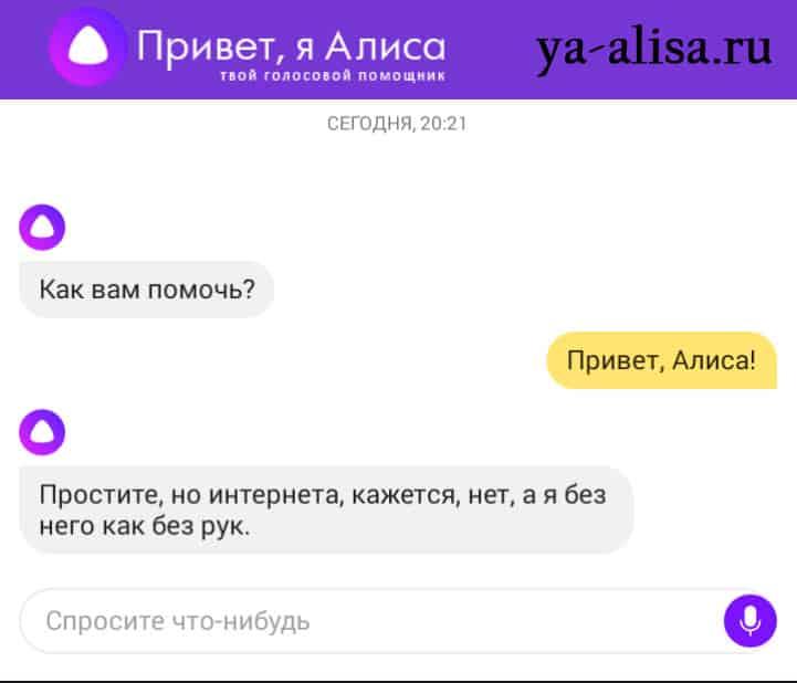 Яндекс Алиса онлайн без скачивания