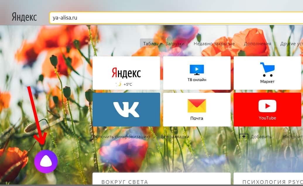 Алиса в яндекс браузере на ПК
