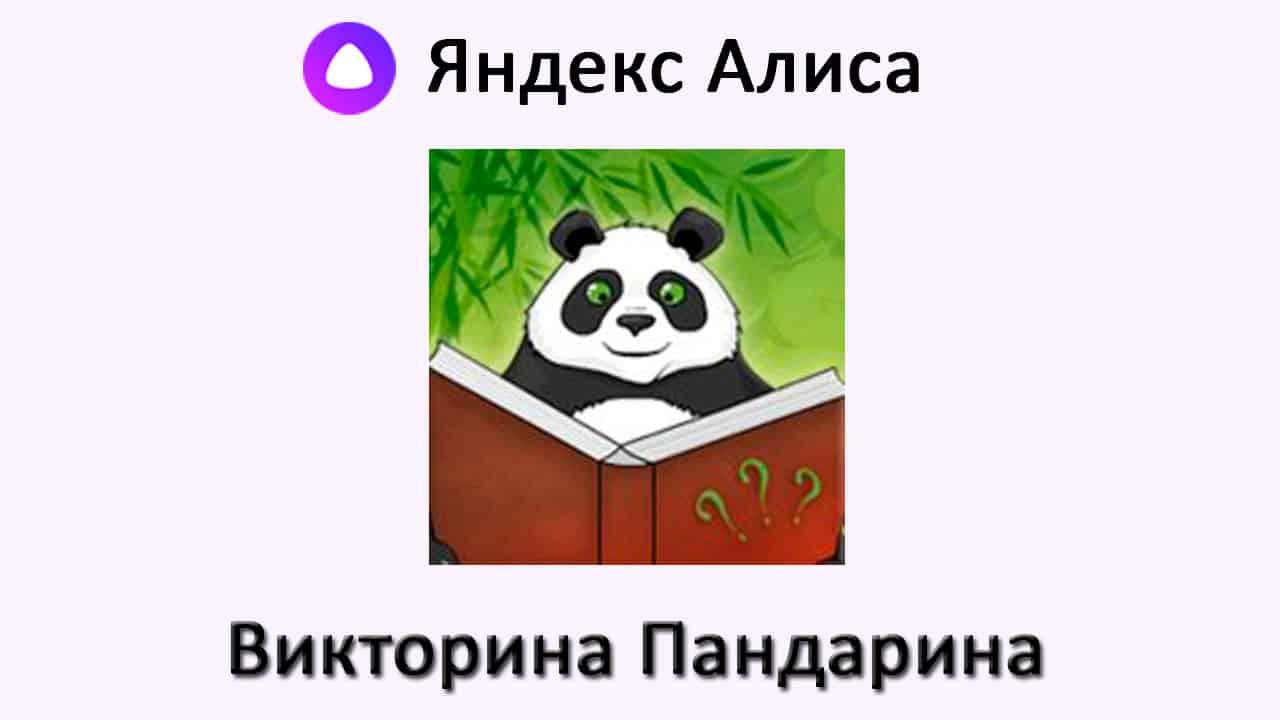 Викторина Пандарина как играть